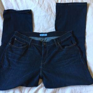 "Designer Denim, James Jeans, Plus Size 16, 30"" ins"